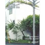 JA 99. KAZUYO SEJIMA. Living Space | 4910051331052 | Japan Architect magazine