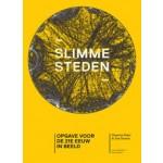 Slimme steden. Opgaven voor de 21e eeuw in beeld (ebook) | Ton Dassen, Maarten Hajer | 9789462081802