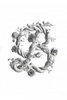Sagmeister & Walsh: Beauty | Stefan Sagmeister & Jessica Walsh | 9780714877273 | PHAIDON