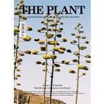 THE PLANT. Issue 03 Camellia. The obscure geometry of a flower | The Plant Journal