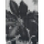 Full Color / Karel Martens | David Senior, Karel Martens | 9789077459980