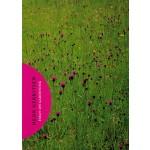 Essay on gardening | Henk Gerritsen | 9789461400123